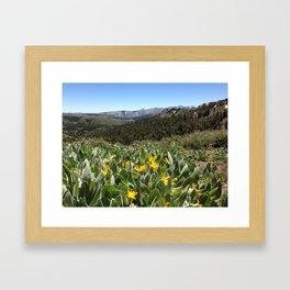 SONORA PASS ELEV 9624 FT - CALIF. Framed Art Print