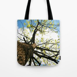 Tree Blossoming in the Blue Sky Tote Bag