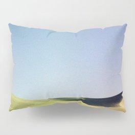 grain loss Pillow Sham