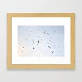 Widening gyre Framed Art Print