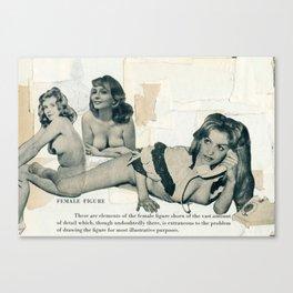 Female Figure Canvas Print