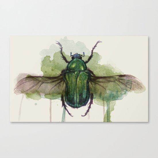 beetle II Canvas Print
