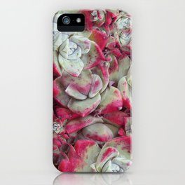 Red Succulent Fractal iPhone Case