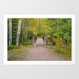 Colorado Mountain Bridge Art Print