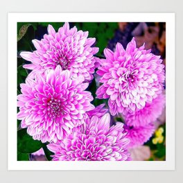 Beautiful Pink Flowers Art Print