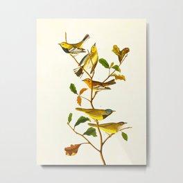 Birds & Plants Metal Print