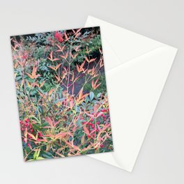 Spring fire Stationery Cards