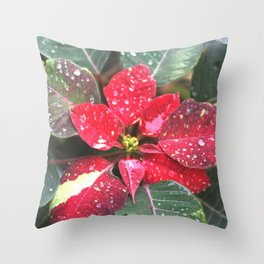 Raindrops on a poinsettia Christmas flower Throw Pillow