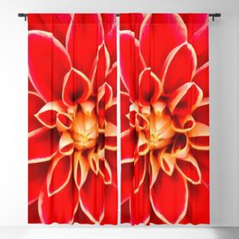 Red Dahlia Rose pattern Blackout Curtain