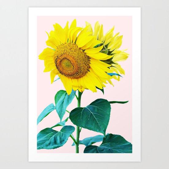Sun Flowers #society6 #decor #buyart Art Print