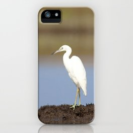 Watercolor Bird, Little Blue Heron 11, Janes Island, Maryland iPhone Case