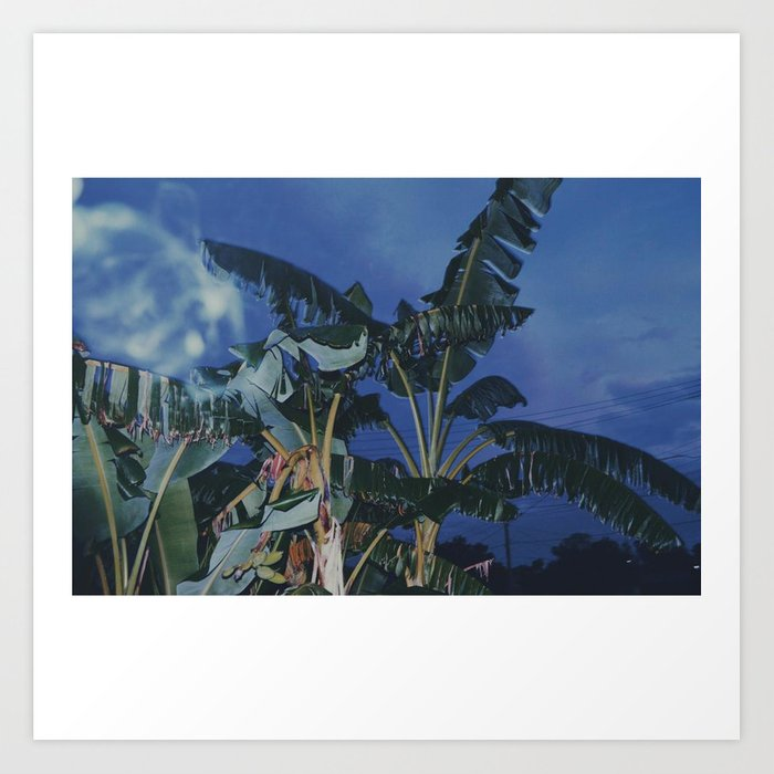 Bananas Blue Art Print