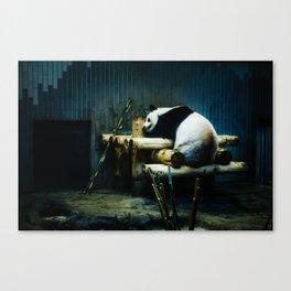 Panda in Ueno Canvas Print
