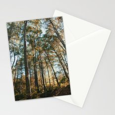 into the woods 08 Stationery Cards