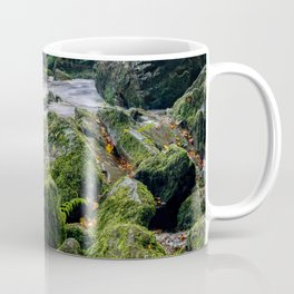 Fairy Glen Snowdonia Coffee Mug