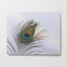 Feather. Metal Print