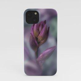 Hosta Flower Bud Purple And Green iPhone Case