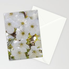 Tiny White Flowers Stationery Cards