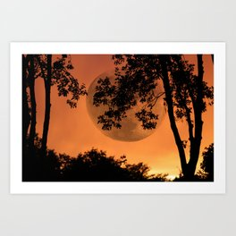 Orange Evening - JUSTART © Art Print