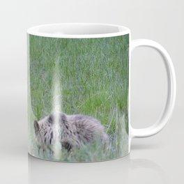 Grizzly mother & cub in Jasper National Park | Canada Coffee Mug