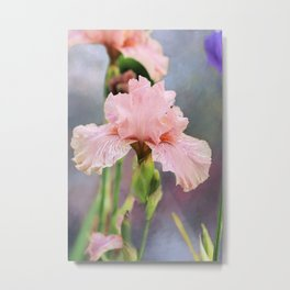 Lovely Pink Iris Metal Print