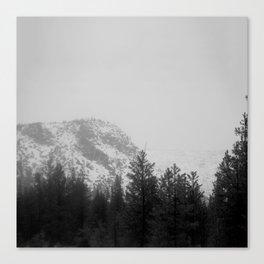 Daunt Canvas Print