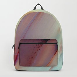 What's this? Backpack