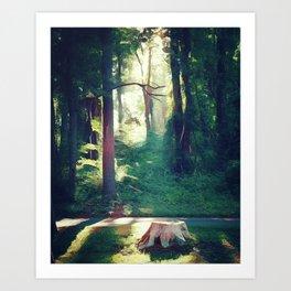 Forest Light III Art Print