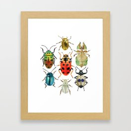 Beetle Compilation Framed Art Print