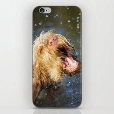 Make a BIG Splash iPhone & iPod Skin