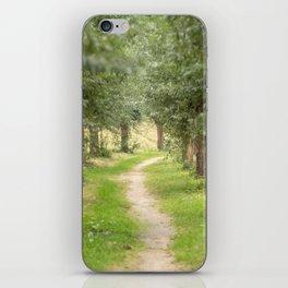Willow Lane II iPhone Skin
