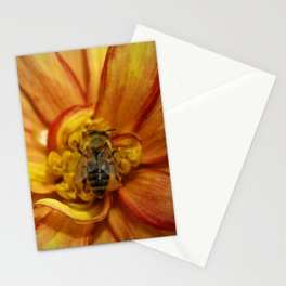 bee Grounded Stationery Cards
