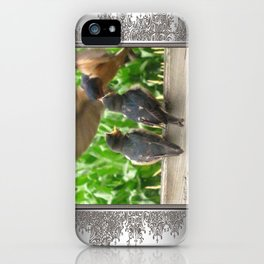 The Adult Barn Swallow Arrives with Lunch for One iPhone Case