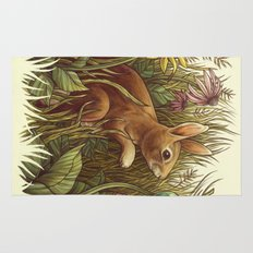 The Cottontail and the Katydid Rug