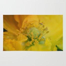 Beautiful macro shot of a poppy flower Rug