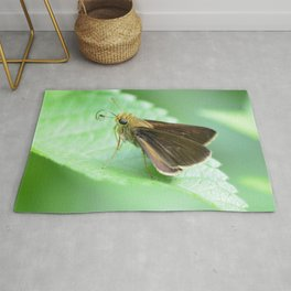 moth on a leaf Rug