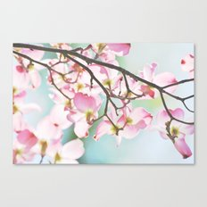 Dogwood Tree Canvas Print
