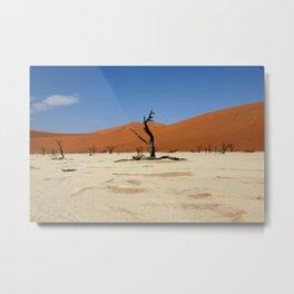 Deadvlie and sossusvlie Namibia Metal Print