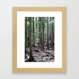 Skinny Trees Framed Art Print