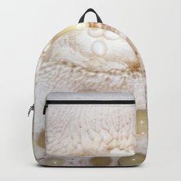 Watercolor Rock, Lechuguilla Cave 10, New Mexico, Pearls a Plenty Backpack