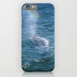 Grey Whale Spouting Rainbows iPhone Case