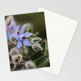 Blue wild flower | macro | fine art | flower photography Stationery Cards