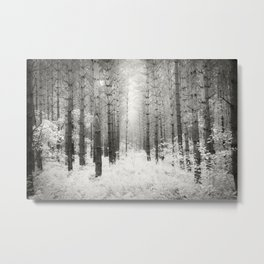 Into the Forest - Nr. 3 Metal Print