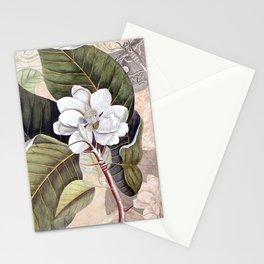 Vintage White Magnolia Stationery Cards
