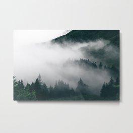 Forest Fog XVIII Metal Print