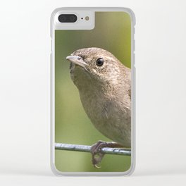 Mad Mama Wren Clear iPhone Case