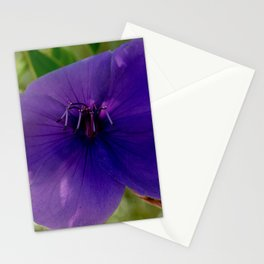 Pensamiento púrpura Stationery Cards