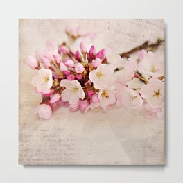 cherry blossoms with typography Metal Print