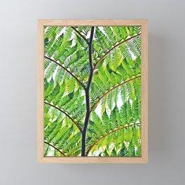Second Exotc Tree Framed Mini Art Print