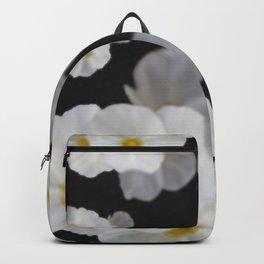 Dreaming white blossom flower Backpack